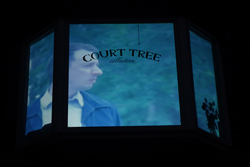 court tree 1 resize
